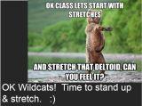 Everybody Stretch